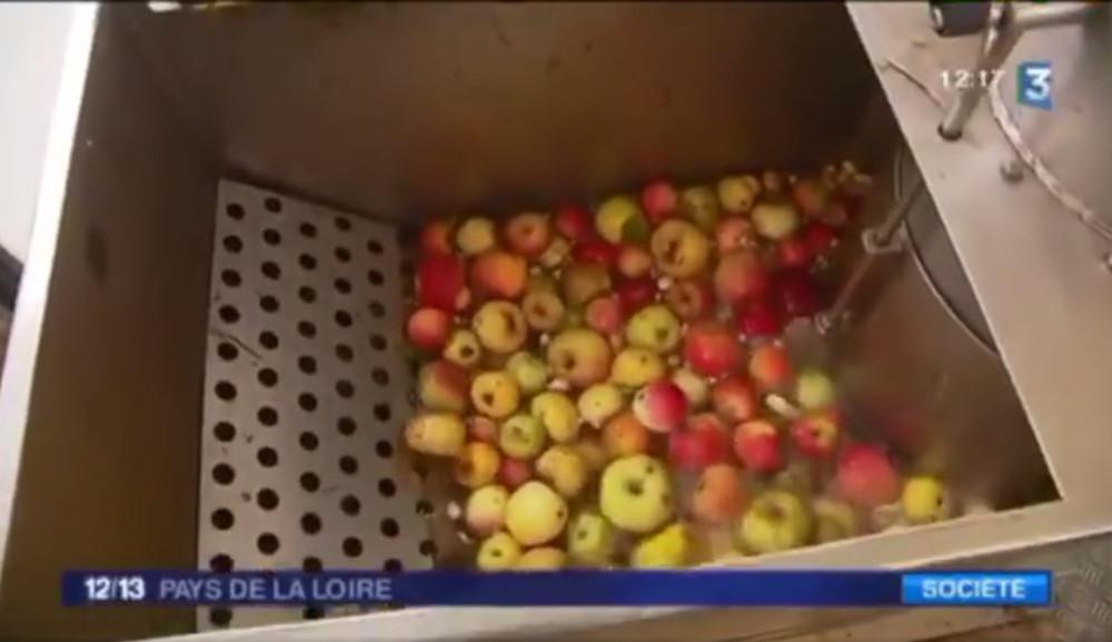 """""""Une production locale et durable"""" : Mouvipress sur France 3 Pays de la Loire"""